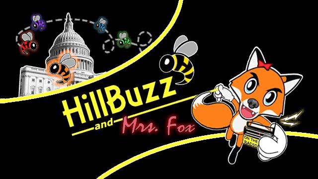 HillBuzzMrsFoxlogo