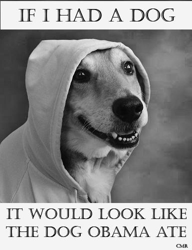 Obama Dog Hoodie