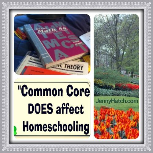 Stop Common Core Meme by Jenny Hatch 4
